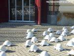 Rachid Khimoune 1000 Tortues pour la Paix Ar[T]senal Dreux