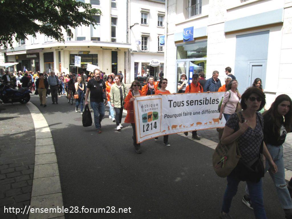 Chartres 25-05-2019 Marche pour le Climat 07