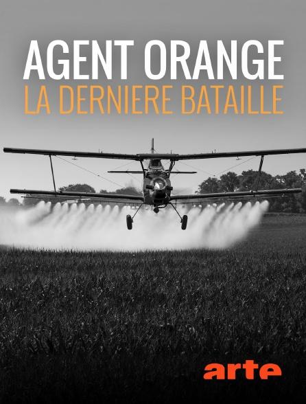 Agent orange, la dernière bataille [Affiche]