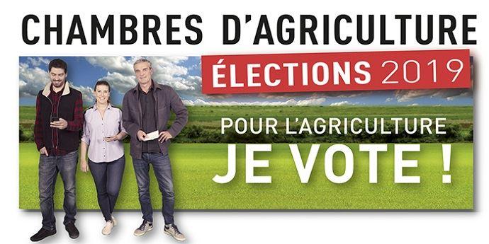 Élection_chambres_agriculture__2019_je_vote