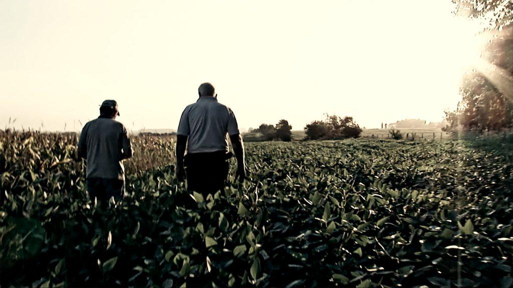 Le Grain et l'Ivraie [Photo 4]