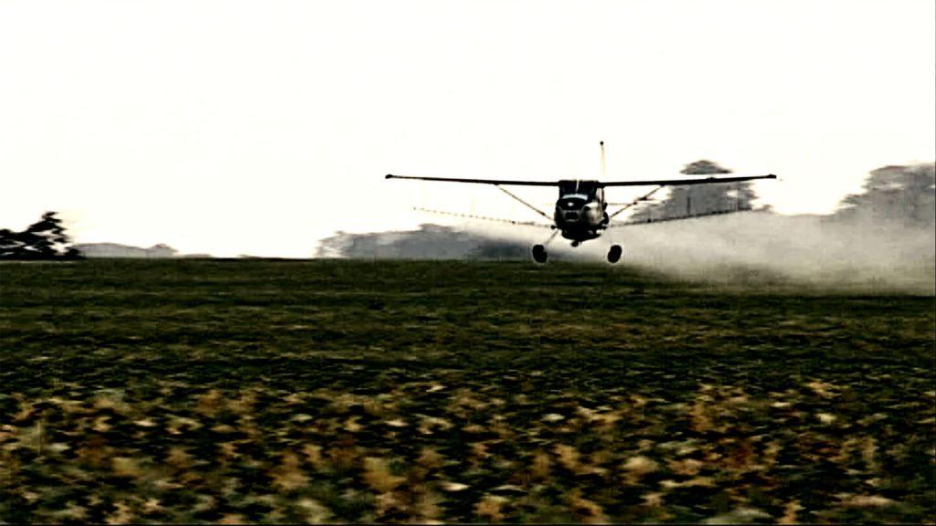 Le Grain et l'Ivraie [Photo 5]