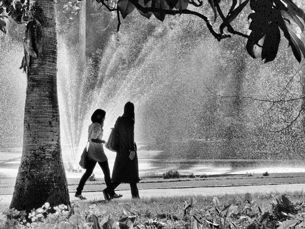 Jardin d'essais, Alger [Photo Christophe Pénicaud]