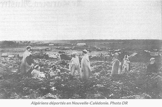 Algériens déportés en Nouvelle-Calédonie